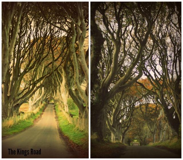 Kings Road- Game of Thrones- Dark Hedges Northern Ireland